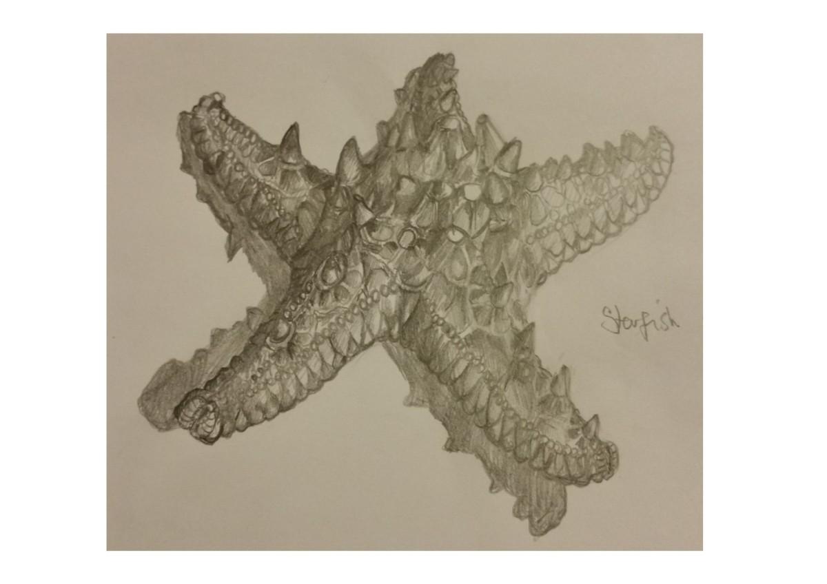 Texture Sketcher