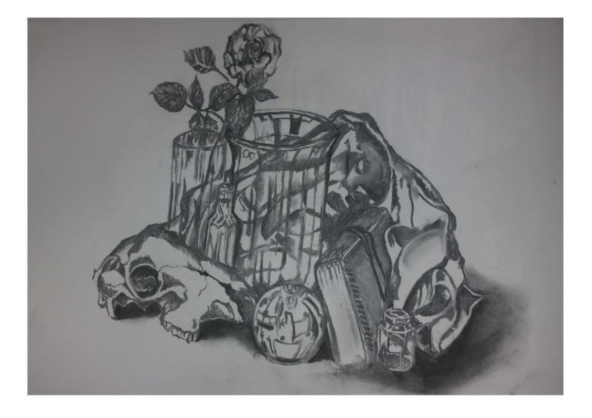 charcoal skull study