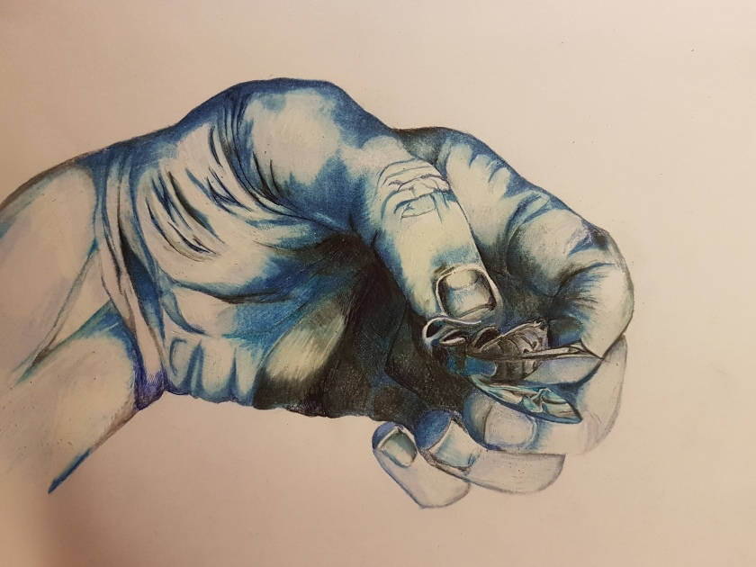 hand holding hornet study