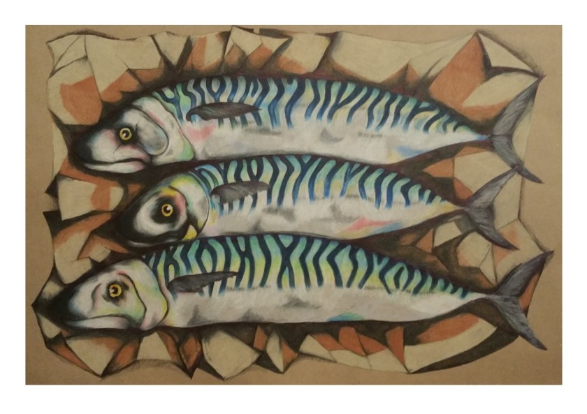 mackerel final piece on brown paper