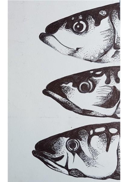 mackerel heads pointillism