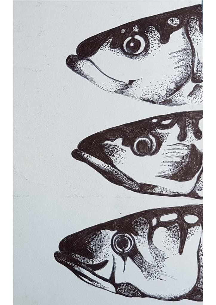 mackerel heads pointillism