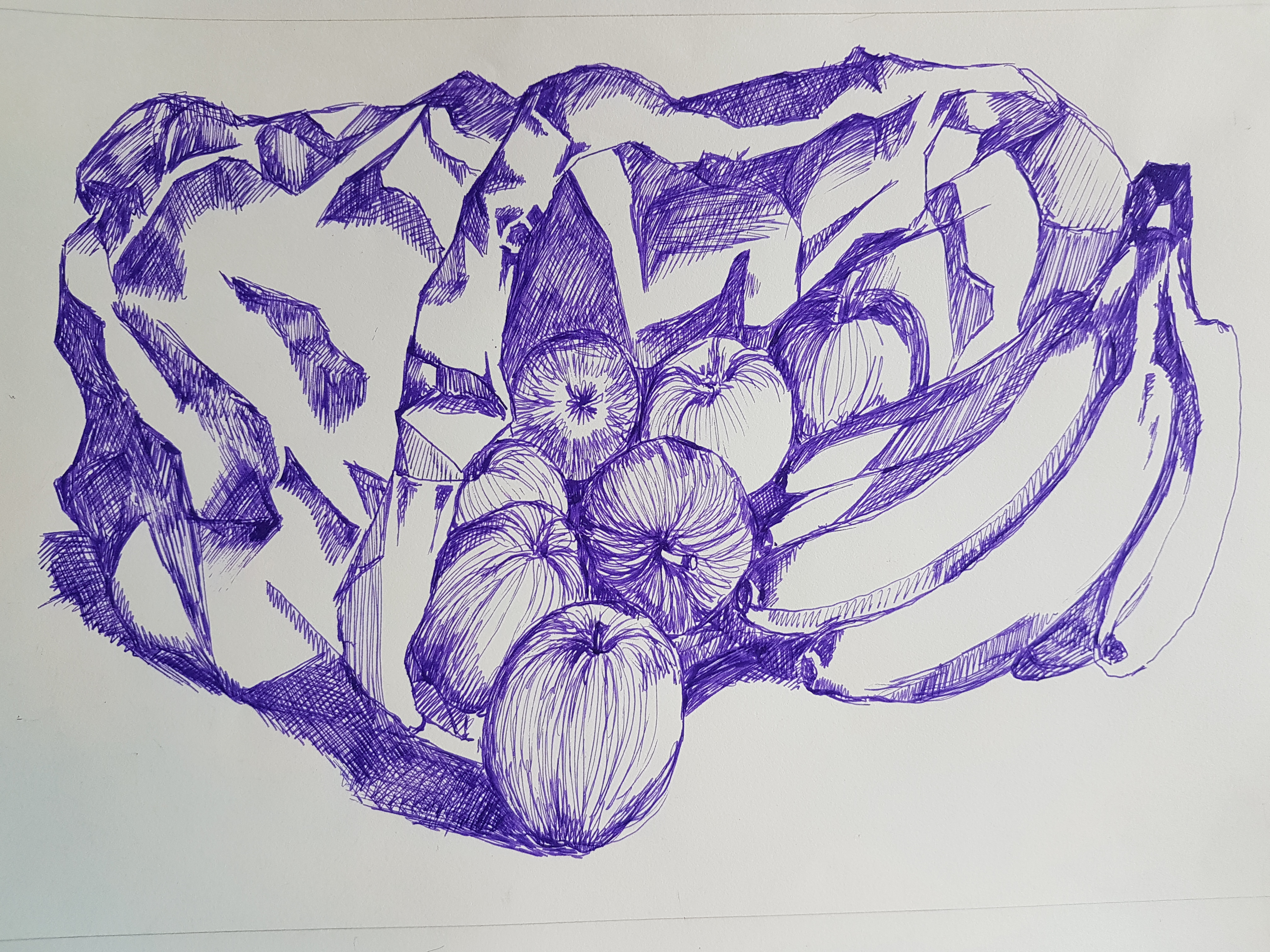 purple fountain pen on white paper, fruit and paper bag, preliminary sketch for playing with colour final piece